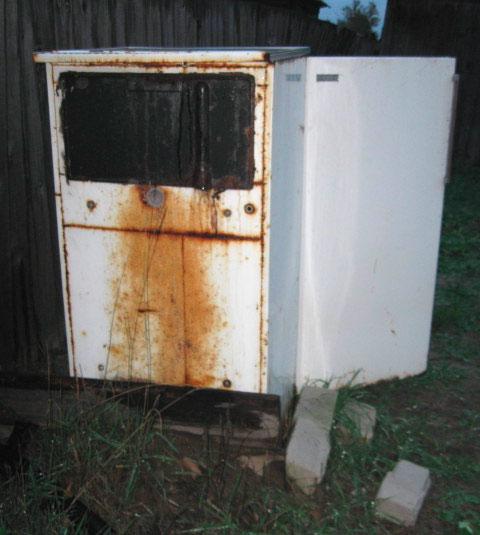 Холодильник «Дон» (фото 3)