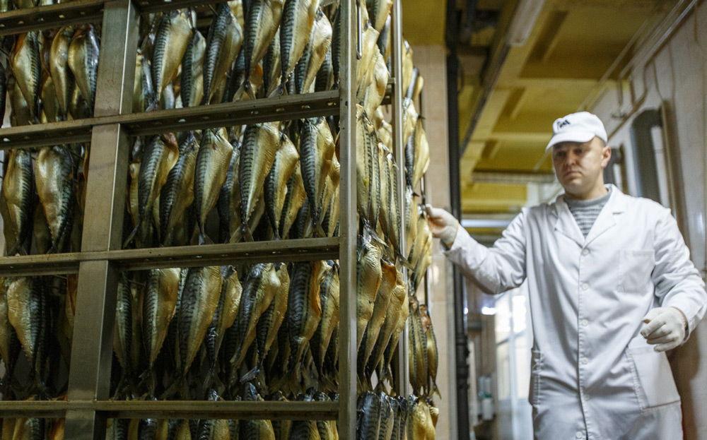 Производство копчёной рыбы